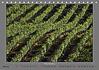 Strukturen im Weinbau (Tischkalender 2019 DIN A5 quer) - Produktdetailbild 6