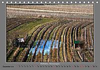 Strukturen im Weinbau (Tischkalender 2019 DIN A5 quer) - Produktdetailbild 12