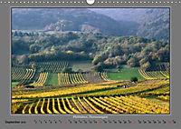 Strukturen im Weinbau (Wandkalender 2019 DIN A3 quer) - Produktdetailbild 9