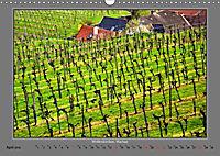 Strukturen im Weinbau (Wandkalender 2019 DIN A3 quer) - Produktdetailbild 4