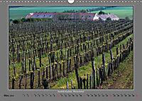 Strukturen im Weinbau (Wandkalender 2019 DIN A3 quer) - Produktdetailbild 3