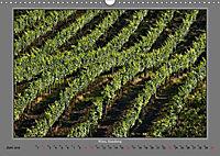 Strukturen im Weinbau (Wandkalender 2019 DIN A3 quer) - Produktdetailbild 6