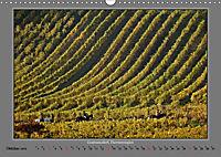 Strukturen im Weinbau (Wandkalender 2019 DIN A3 quer) - Produktdetailbild 10
