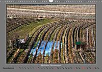 Strukturen im Weinbau (Wandkalender 2019 DIN A3 quer) - Produktdetailbild 12