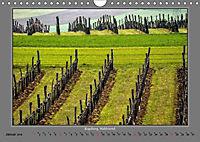 Strukturen im Weinbau (Wandkalender 2019 DIN A4 quer) - Produktdetailbild 1