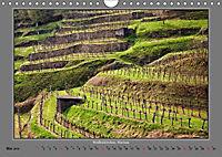 Strukturen im Weinbau (Wandkalender 2019 DIN A4 quer) - Produktdetailbild 5