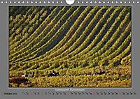 Strukturen im Weinbau (Wandkalender 2019 DIN A4 quer) - Produktdetailbild 10
