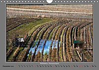 Strukturen im Weinbau (Wandkalender 2019 DIN A4 quer) - Produktdetailbild 12