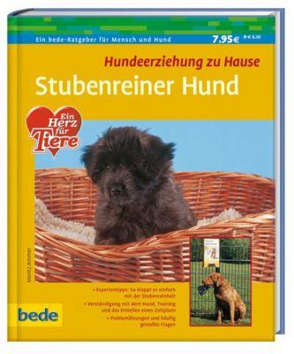 Stubenreiner Hund, Moritz Ammer