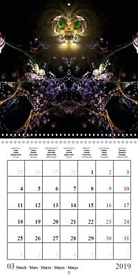 Stunning creepy-crawlies (Wall Calendar 2019 300 × 300 mm Square) - Produktdetailbild 3