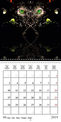 Stunning creepy-crawlies (Wall Calendar 2019 300 × 300 mm Square) - Produktdetailbild 6