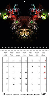 Stunning creepy-crawlies (Wall Calendar 2019 300 × 300 mm Square) - Produktdetailbild 11