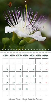 Stunning Flower Portraits (Wall Calendar 2019 300 × 300 mm Square) - Produktdetailbild 2