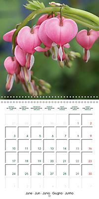 Stunning Flower Portraits (Wall Calendar 2019 300 × 300 mm Square) - Produktdetailbild 6