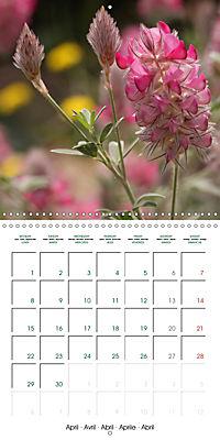 Stunning Flower Portraits (Wall Calendar 2019 300 × 300 mm Square) - Produktdetailbild 4