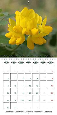 Stunning Flower Portraits (Wall Calendar 2019 300 × 300 mm Square) - Produktdetailbild 12