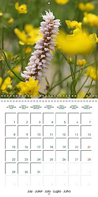 Stunning Flower Portraits (Wall Calendar 2019 300 × 300 mm Square) - Produktdetailbild 7