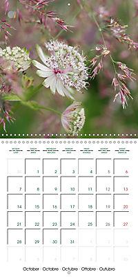 Stunning Flower Portraits (Wall Calendar 2019 300 × 300 mm Square) - Produktdetailbild 10