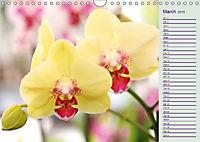 Stunning Orchids (Wall Calendar 2019 DIN A4 Landscape) - Produktdetailbild 3