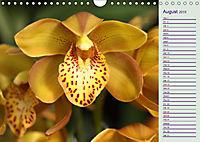 Stunning Orchids (Wall Calendar 2019 DIN A4 Landscape) - Produktdetailbild 8