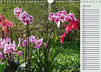 Stunning Orchids (Wall Calendar 2019 DIN A4 Landscape) - Produktdetailbild 7
