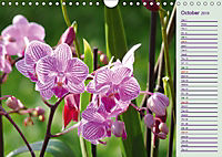 Stunning Orchids (Wall Calendar 2019 DIN A4 Landscape) - Produktdetailbild 10