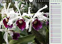 Stunning Orchids (Wall Calendar 2019 DIN A4 Landscape) - Produktdetailbild 12