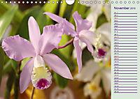 Stunning Orchids (Wall Calendar 2019 DIN A4 Landscape) - Produktdetailbild 11