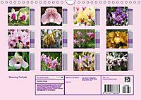Stunning Orchids (Wall Calendar 2019 DIN A4 Landscape) - Produktdetailbild 13