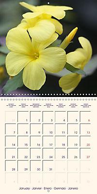 Stunning Spring Flowers (Wall Calendar 2019 300 × 300 mm Square) - Produktdetailbild 1