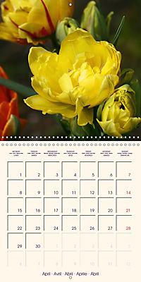 Stunning Spring Flowers (Wall Calendar 2019 300 × 300 mm Square) - Produktdetailbild 4