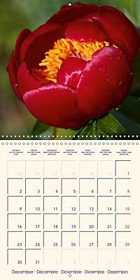 Stunning Spring Flowers (Wall Calendar 2019 300 × 300 mm Square) - Produktdetailbild 12