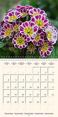 Stunning Spring Flowers (Wall Calendar 2019 300 × 300 mm Square) - Produktdetailbild 11
