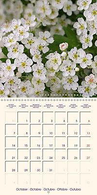 Stunning Spring Flowers (Wall Calendar 2019 300 × 300 mm Square) - Produktdetailbild 10