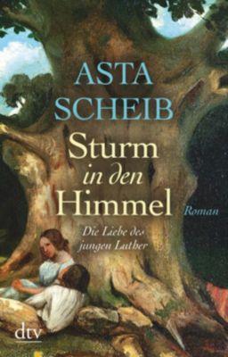 Sturm in den Himmel - Asta Scheib |
