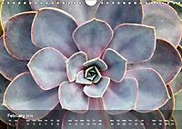 Succulent Dreams (Wall Calendar 2019 DIN A4 Landscape) - Produktdetailbild 2