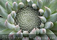 Succulent Dreams (Wall Calendar 2019 DIN A4 Landscape) - Produktdetailbild 7
