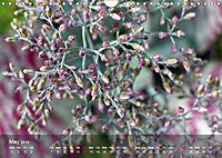 Succulent Dreams (Wall Calendar 2019 DIN A4 Landscape) - Produktdetailbild 5