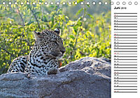 Südafrika - Big 5 und mehr (Tischkalender 2019 DIN A5 quer) - Produktdetailbild 6