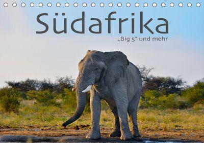 Südafrika - Big 5 und mehr (Tischkalender 2019 DIN A5 quer), Robert Styppa