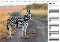 Südafrika - Big 5 und mehr (Tischkalender 2019 DIN A5 quer) - Produktdetailbild 3