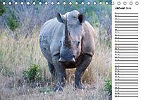 Südafrika - Big 5 und mehr (Tischkalender 2019 DIN A5 quer) - Produktdetailbild 1