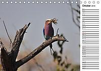 Südafrika - Big 5 und mehr (Tischkalender 2019 DIN A5 quer) - Produktdetailbild 10