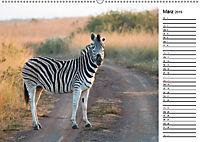 Südafrika - Big 5 und mehr (Wandkalender 2019 DIN A2 quer) - Produktdetailbild 3