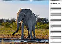 Südafrika - Big 5 und mehr (Wandkalender 2019 DIN A2 quer) - Produktdetailbild 12