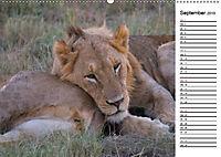 Südafrika - Big 5 und mehr (Wandkalender 2019 DIN A2 quer) - Produktdetailbild 9