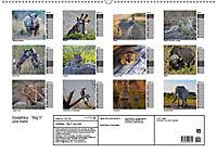 Südafrika - Big 5 und mehr (Wandkalender 2019 DIN A2 quer) - Produktdetailbild 13