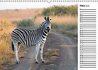 Südafrika - Big 5 und mehr (Wandkalender 2019 DIN A3 quer) - Produktdetailbild 3