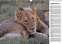 Südafrika - Big 5 und mehr (Wandkalender 2019 DIN A3 quer) - Produktdetailbild 9