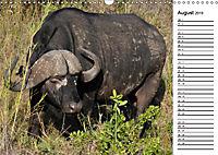 Südafrika - Big 5 und mehr (Wandkalender 2019 DIN A3 quer) - Produktdetailbild 8